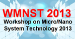 Workshop on Micro/Nano System Technology (WMNST 2013)